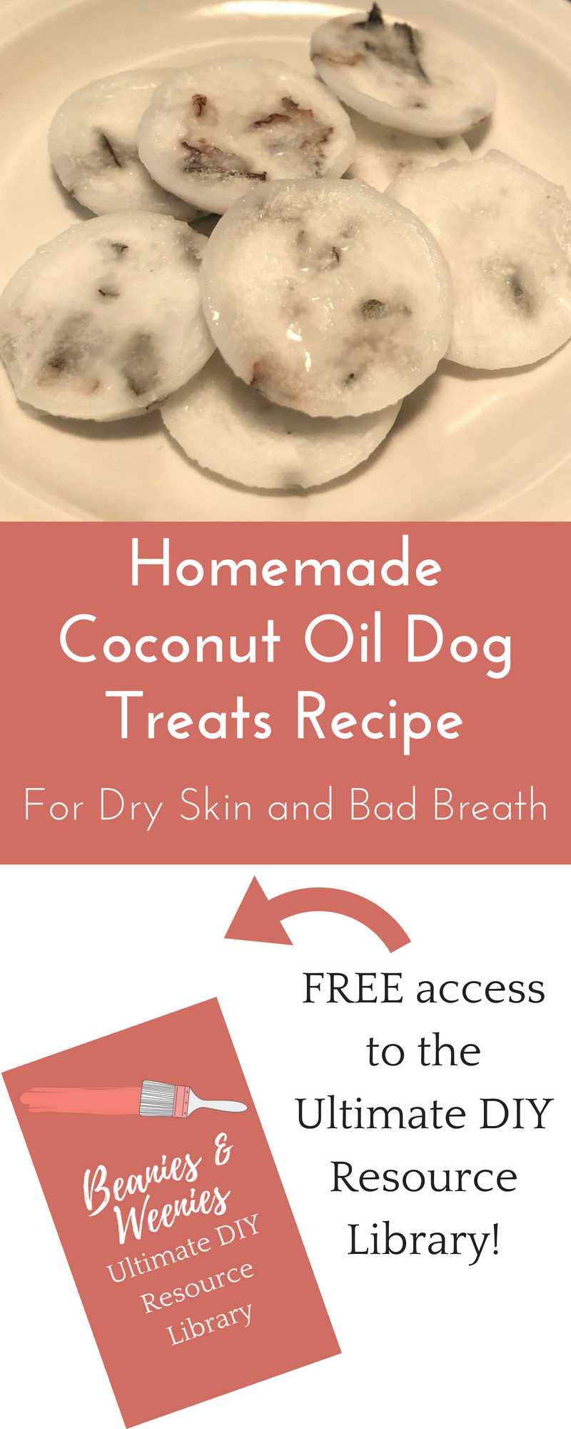Homemade Coconut Oil Dog Treats Recipes